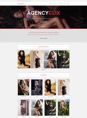 AgencyClix WordPress Theme